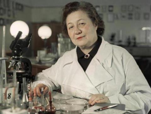 «Мадам Пенициллин»: советска…