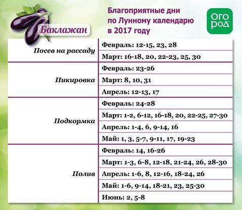 Благоприятные дни для посева баклажанов в 2017 году