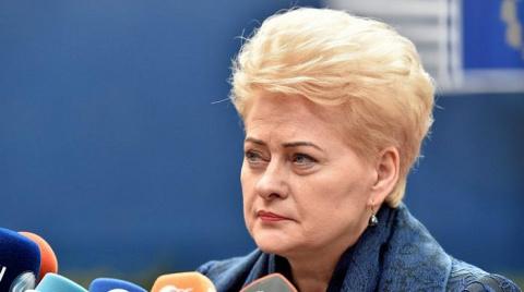 «Иди лесом»: европейцы ответили Грибаускайте на «заманчивое» громкое заявление