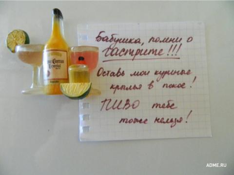 20 записок на холодильнике о…