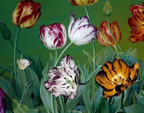 Весенние цветы Jose Escofet