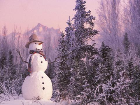 Десять интересных, но малоизвестных фактов о зиме