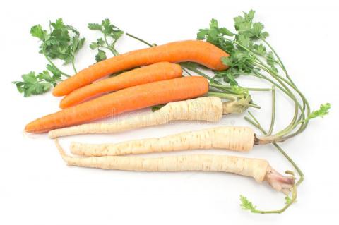 Секреты выращивания моркови и петрушки