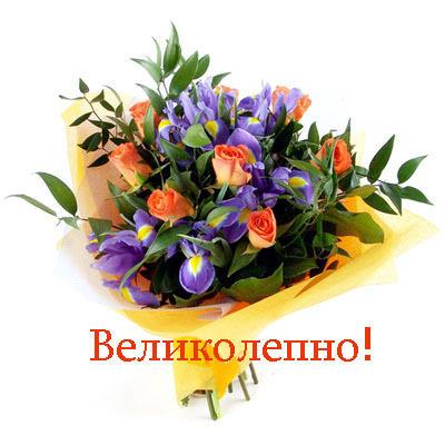 http://mtdata.ru/u4/photoA0DD/20053264365-0/big.jpeg