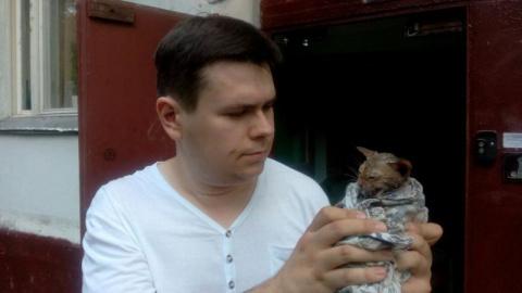 В Москве спасатели достали котенка из канализационной трубы