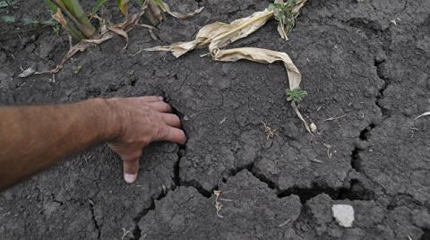 Украина «сдвинулась» на 400 км и приближается к состоянию полупустыни ( Агрессор климат угнал)