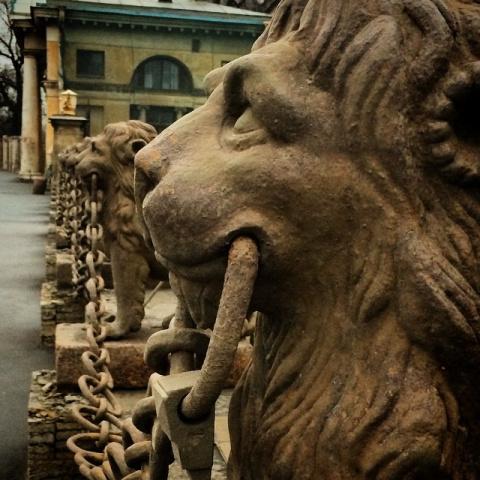 Львов увезли со Свердловской…