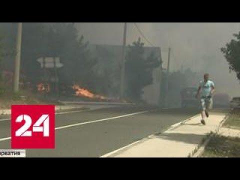 Черногория охвачена пожарами, Россия не может помочь населению из-за политизации