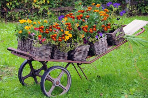 Пять идей для плетней. Как использовать природный материал в декоре участка