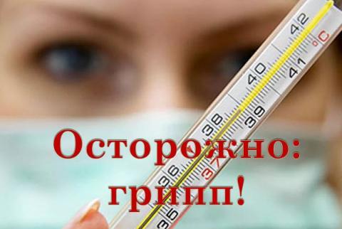 Эпидемия гриппа. Обращение К…