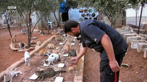 «Человек-кот из Алеппо» оста…