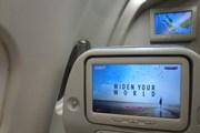 Авиакомпании пробуют смягчит…