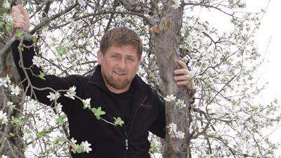 Кадыров удалит Instagram из-…