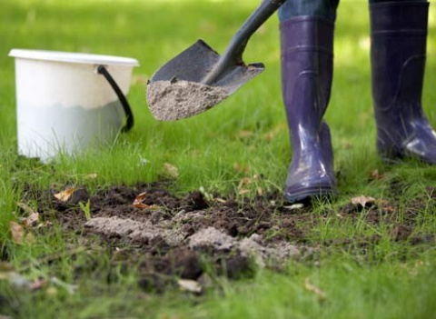 Раскисление почвы - советы опытного садовода
