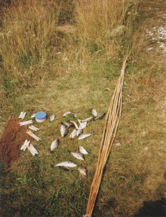 Самодельное удилище из тростника
