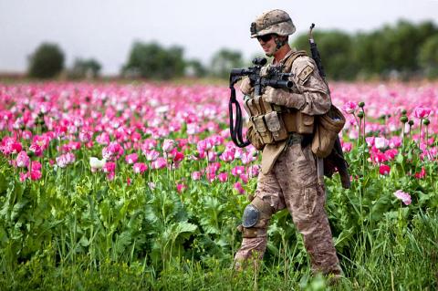 В Афганистане процветает меж…