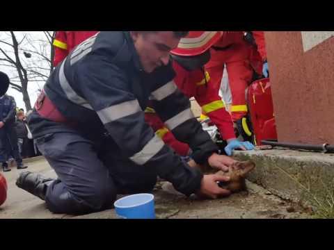 Пожарный, который оживил соб…