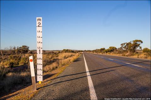 Зачем на австралийских дорог…