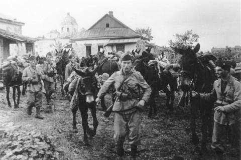 Итальянская кавалерия в донс…