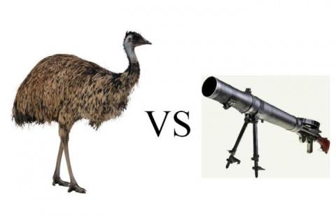 Страусы против пулемета, или…