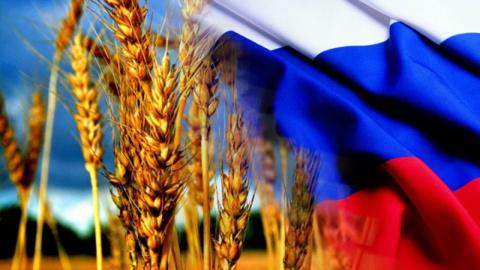 Минсельхоз России: на 18 сен…