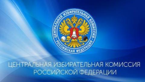 ЦИК отказал жене муфтия Дагестана в возможности участвовать в выборах президента