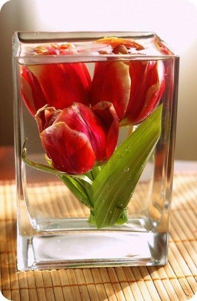 Как сохранить цветы при помо…