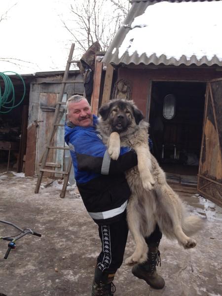 Анатолий Самусик
