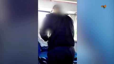 В Швеции водитель автобуса н…