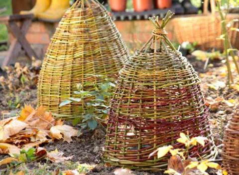 Готовим сад к зиме: укрытие и окучивание растений