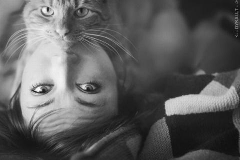 Люди, которые любят кошек (п…