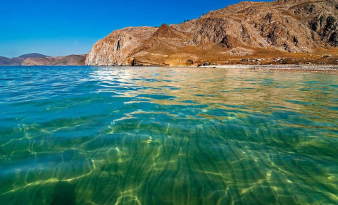 Загадки Байкала: Обитают ли …