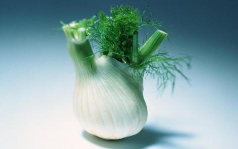 ОВОЩНАЯ САГА. Фенхель овощной