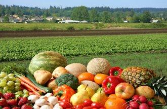 Органическое земледелие – ре…