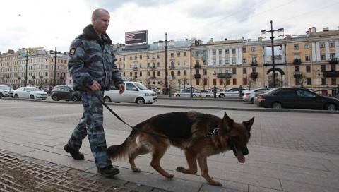 В Петербурге обезвредили взр…