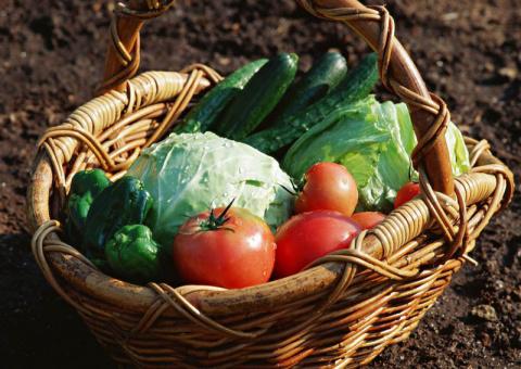 Невредные рецепты: как максимально сохранить витамины в урожае