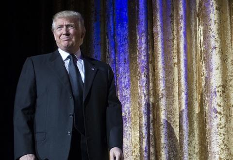 Трамп предложил решившим бой…
