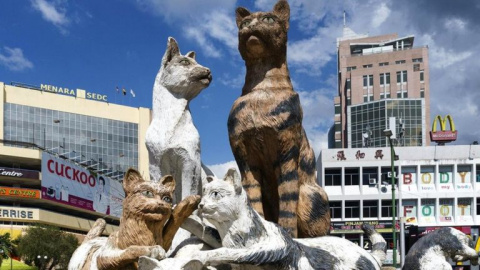 Город, помешанный на котиках.