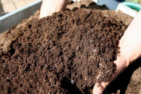 Как определить готовность компоста