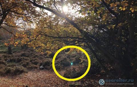 Мужчина случайно сфотографировал портал в иное измерение