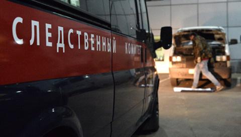 СК РФ арестовал мужчину, кот…