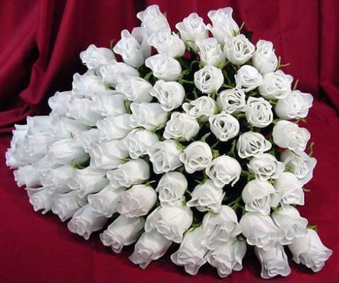 розы многго