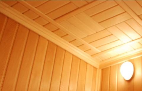 Виды потолков для бани