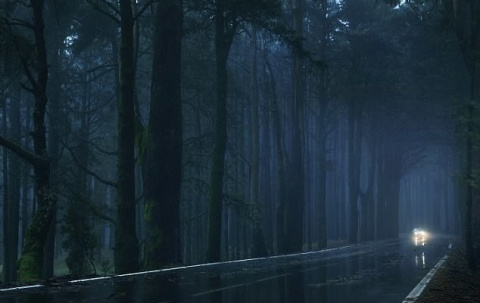 Жуткие истории, случившиеся во время ночной езды на автомобиле