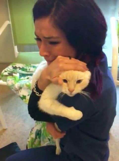 Женщина не сдавалась и нашла своего кота спустя 2 года после пропажи