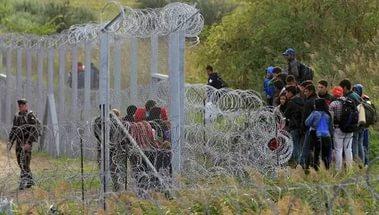 11 нелегальных мигрантов задержаны на румыно-венгерской границе