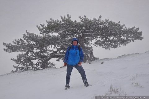 Снегопад в Крыму. Суровая правда