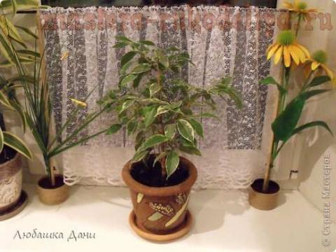 Мобильная шторка для комнатных цветов