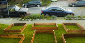 Когда соседи увидели эти дер…