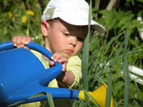 Маленькие секретики (садовод-садоводу)